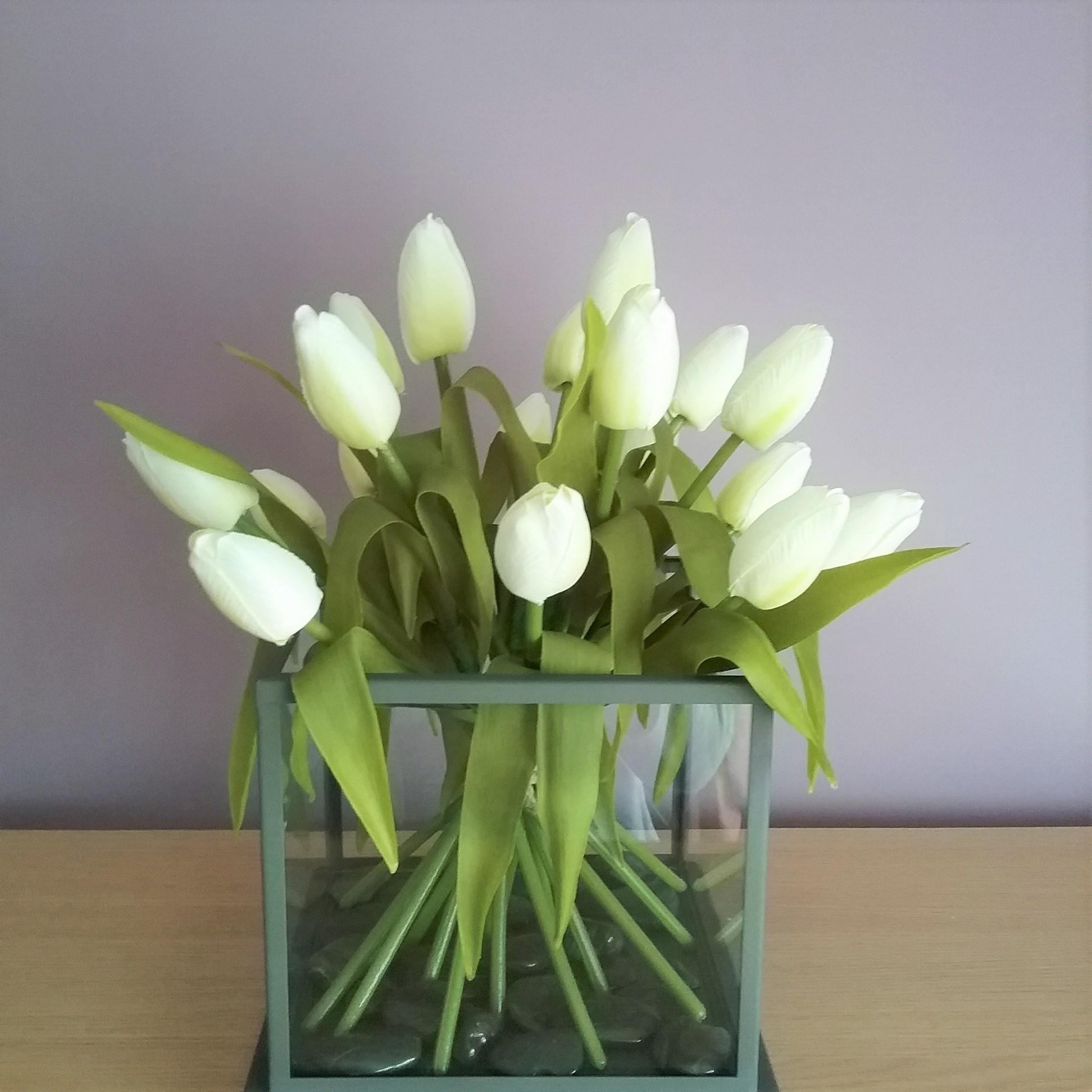 Cream Tulips In A Glass Tube